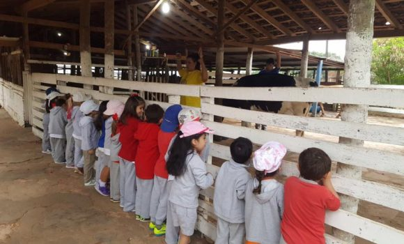 "Kinder Field Trip to ""Las Delicias"" 🐤🐏🐓🐮🐴🐷"
